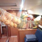 BviProviantHaengematte-150x150 in Atlantiküberquerung